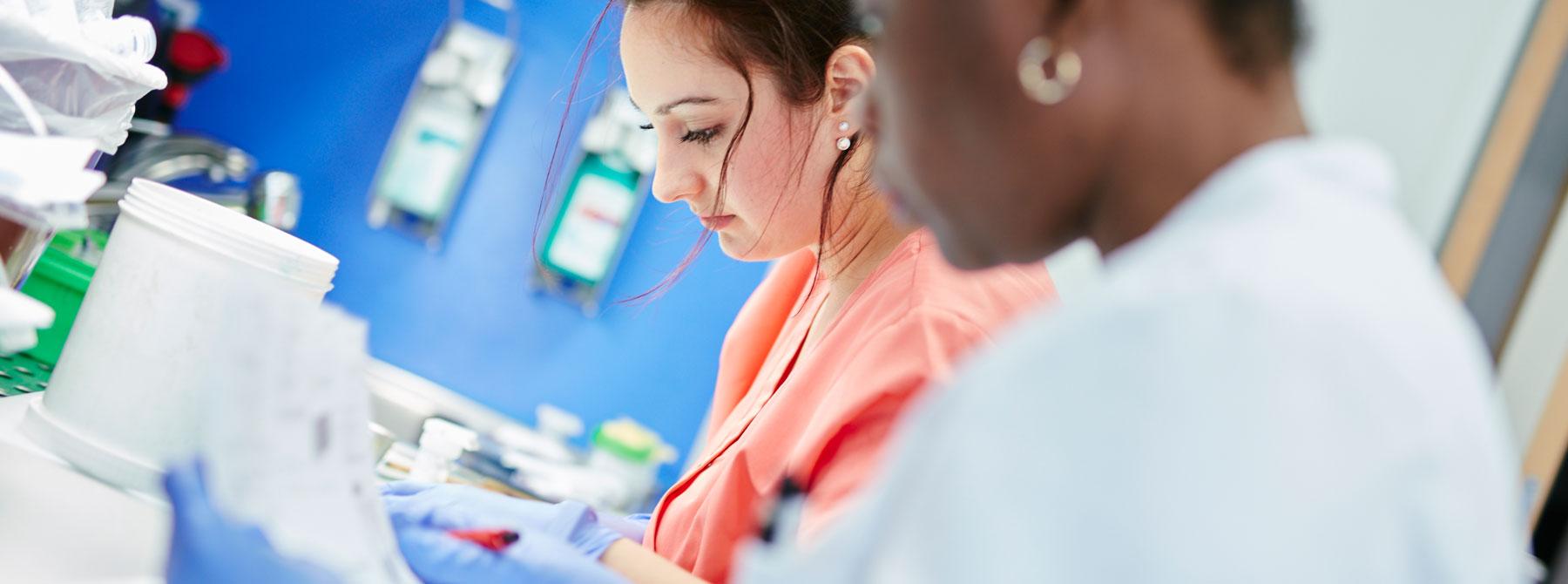 Zwei Laborkräfte bereiten Präparate für eine Schnellschnittuntersuchung vor